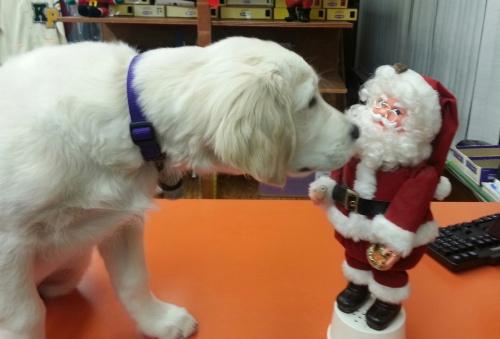 monty kissing santa