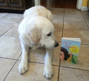 Monty and book copy